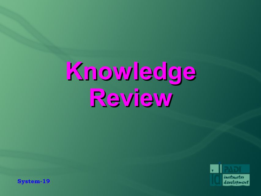 System-19 Knowledge Review