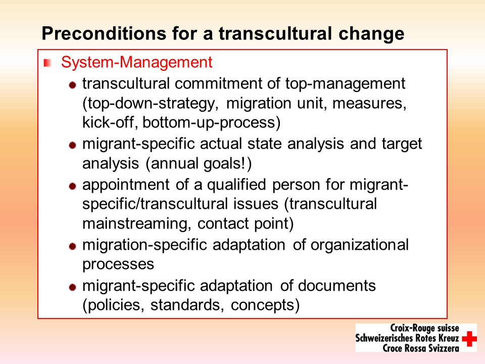 Preconditions for a transcultural change System-Management transcultural commitment of top-management (top-down-strategy, migration unit, measures, kick-off, bottom-up-process) migrant-specific actual state analysis and target analysis (annual goals!) appointment of a qualified person for migrant- specific/transcultural issues (transcultural mainstreaming, contact point) migration-specific adaptation of organizational processes migrant-specific adaptation of documents (policies, standards, concepts)