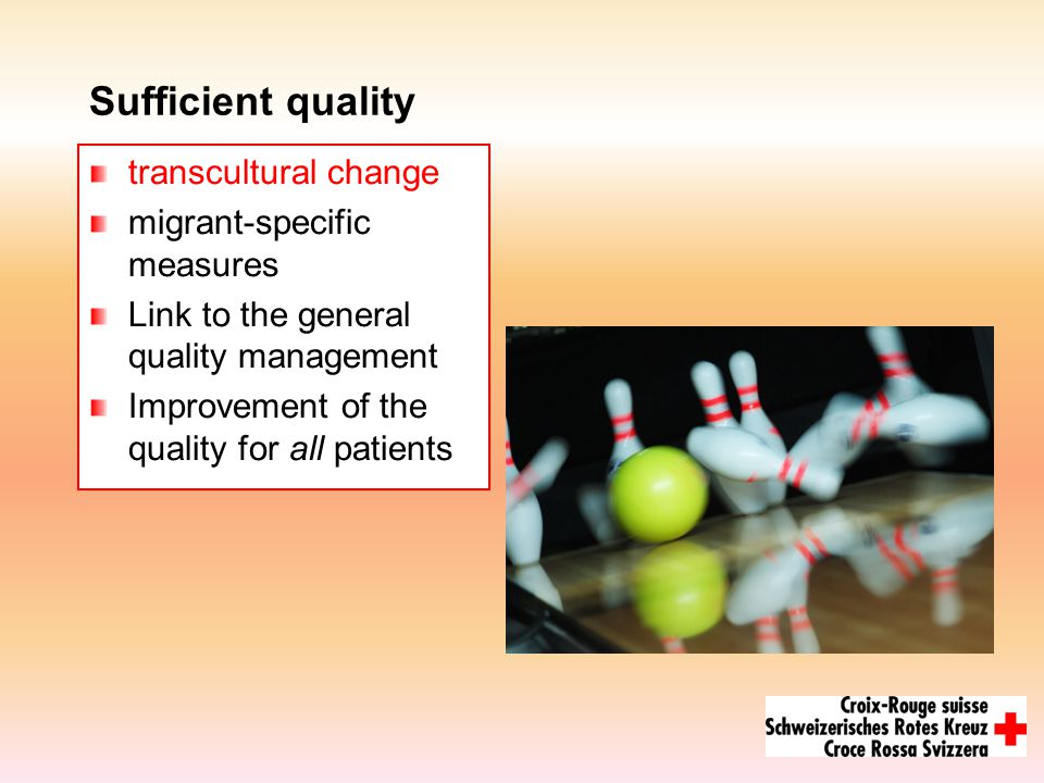 Sufficient quality transcultural change migrant-specific measures Link to the general quality management Improvement of the quality for all patients