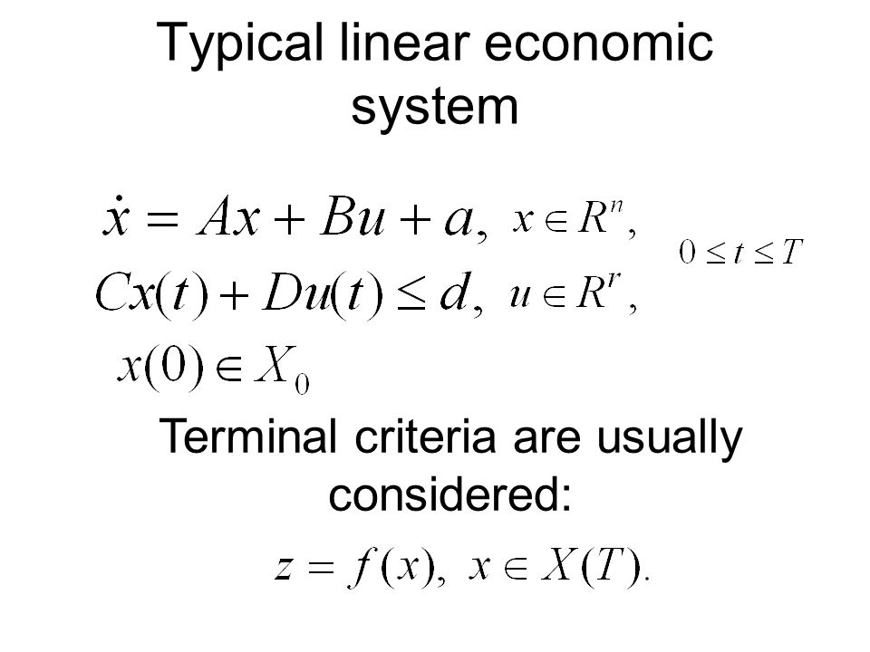 Typical linear economic system Terminal criteria are usually considered: