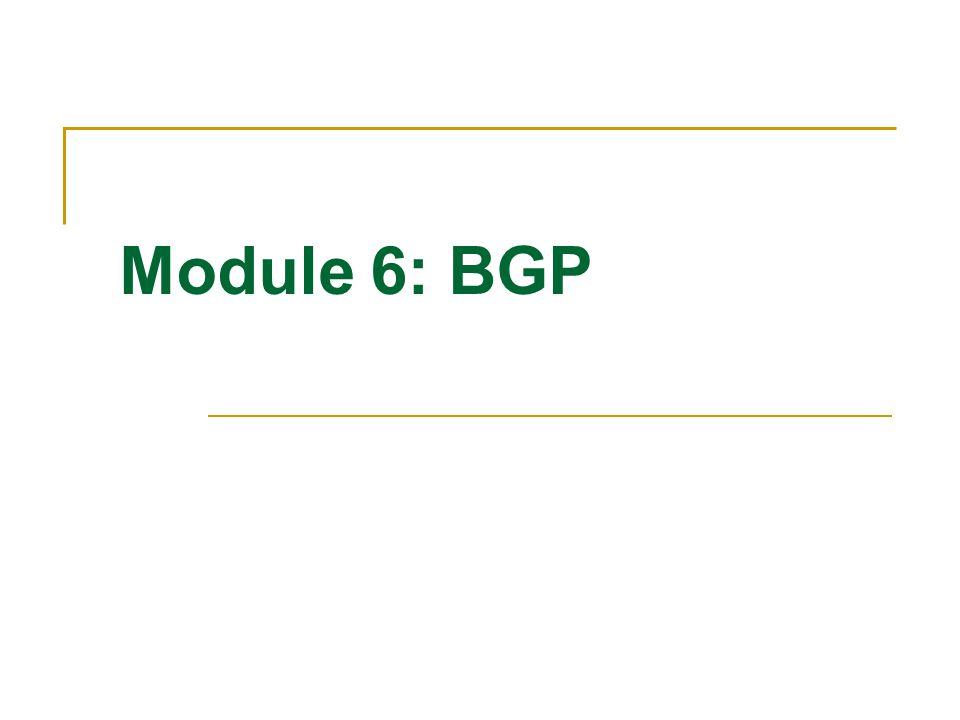 Module 6: BGP