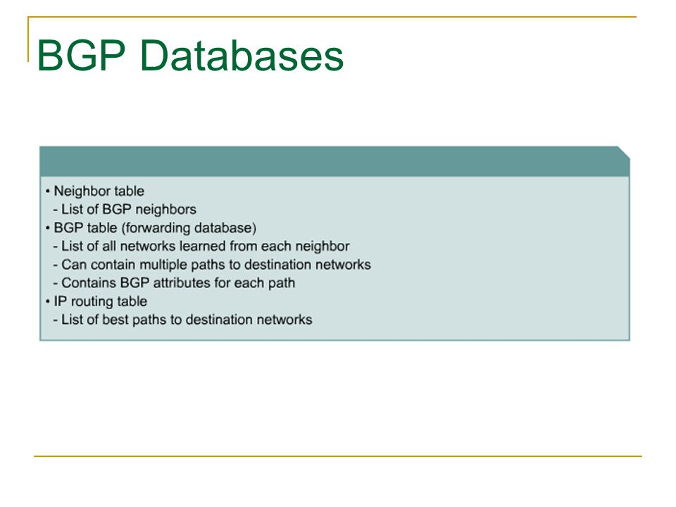 BGP Databases
