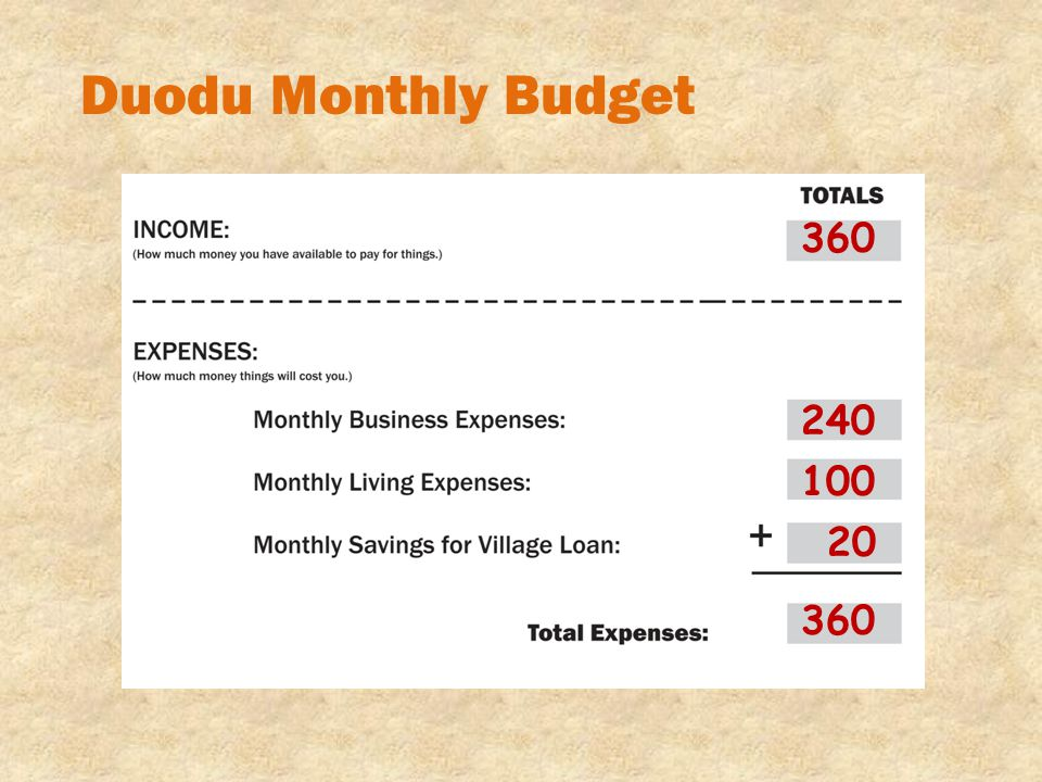 Duodu Monthly Budget 360 240 100 20