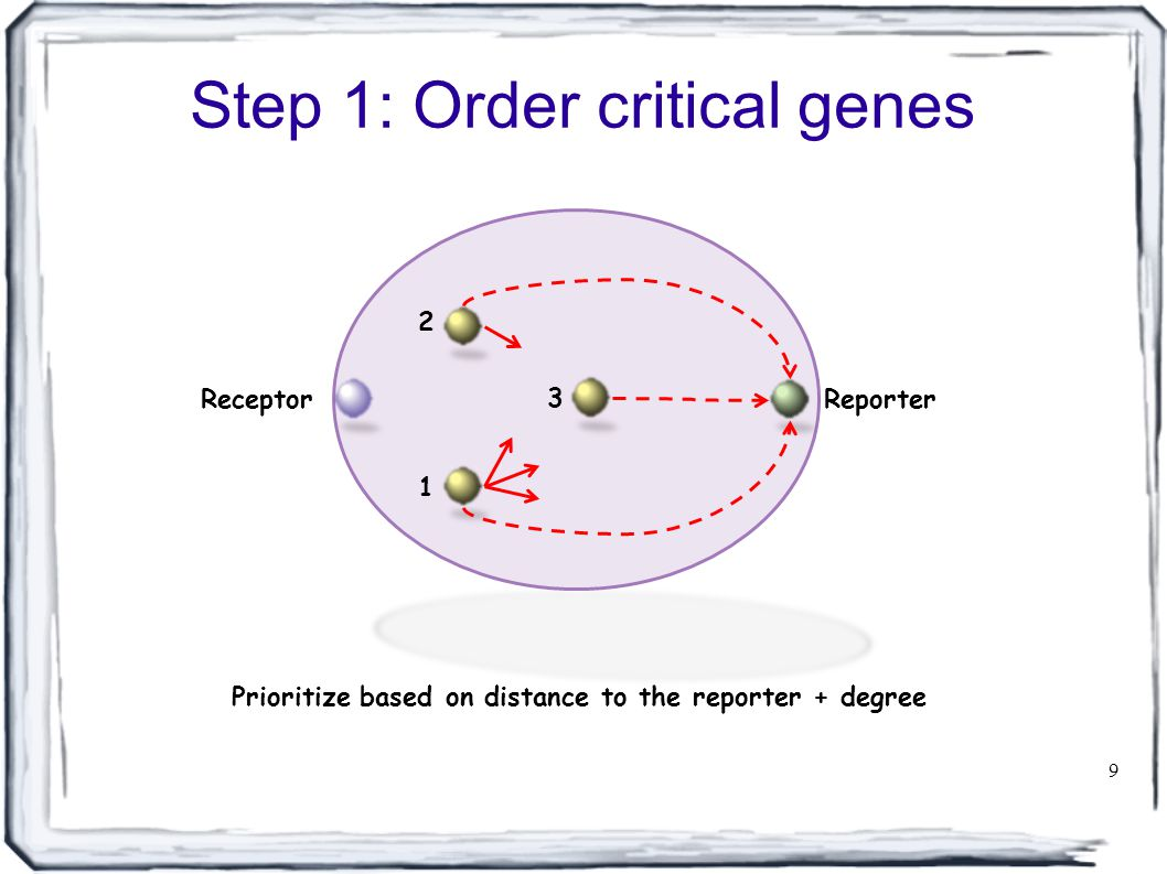 Step 1: Order critical genes 9 ReceptorReporter 3 1 2 Prioritize based on distance to the reporter + degree