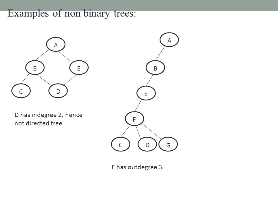 Examples of non binary trees: A BE CD D has indegree 2, hence not directed tree A B E F CD F has outdegree 3.