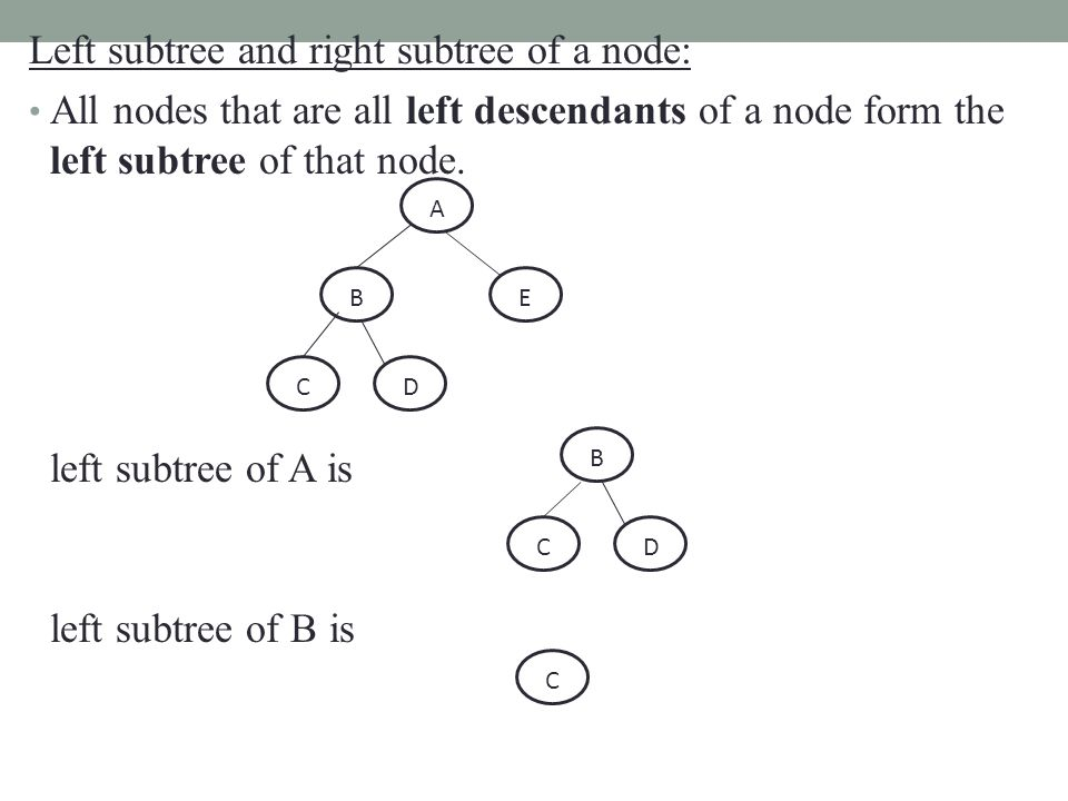 Left subtree and right subtree of a node: All nodes that are all left descendants of a node form the left subtree of that node.