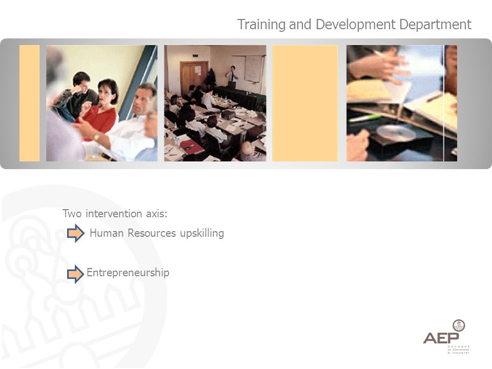 Two intervention axis: Human Resources upskilling Entrepreneurship Training and Development Department