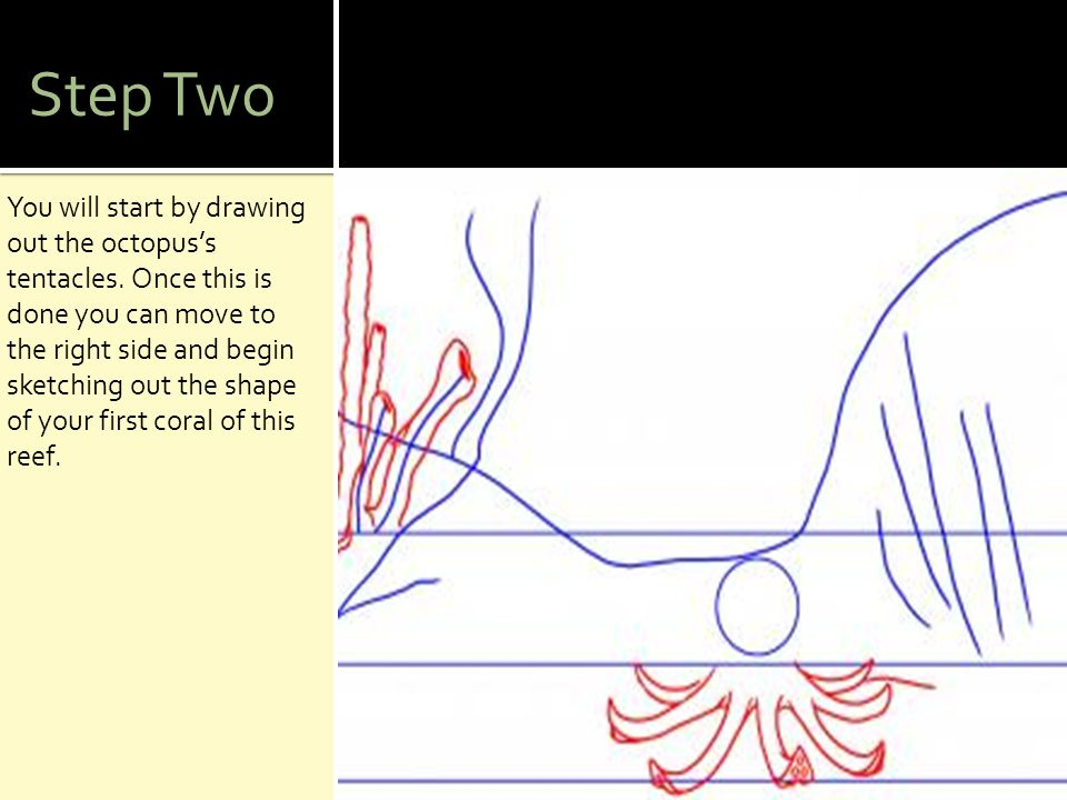 Step Two You will start by drawing out the octopus's tentacles. Once this is done you can move to the right side and begin sketching out the shape of