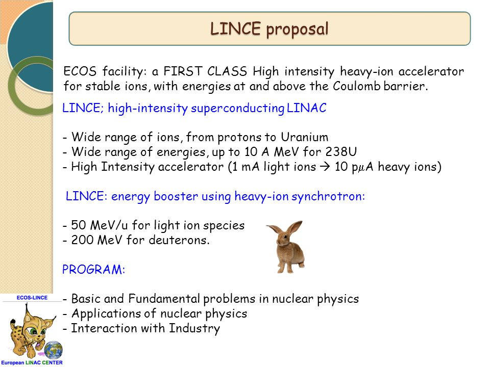 LINCE; high-intensity superconducting LINAC - Wide range of ions, from protons to Uranium - Wide range of energies, up to 10 A MeV for 238U - High Int