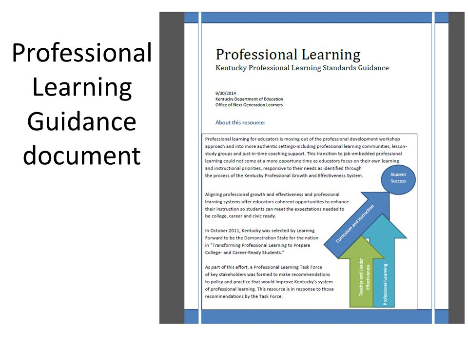 Professional Learning Guidance document