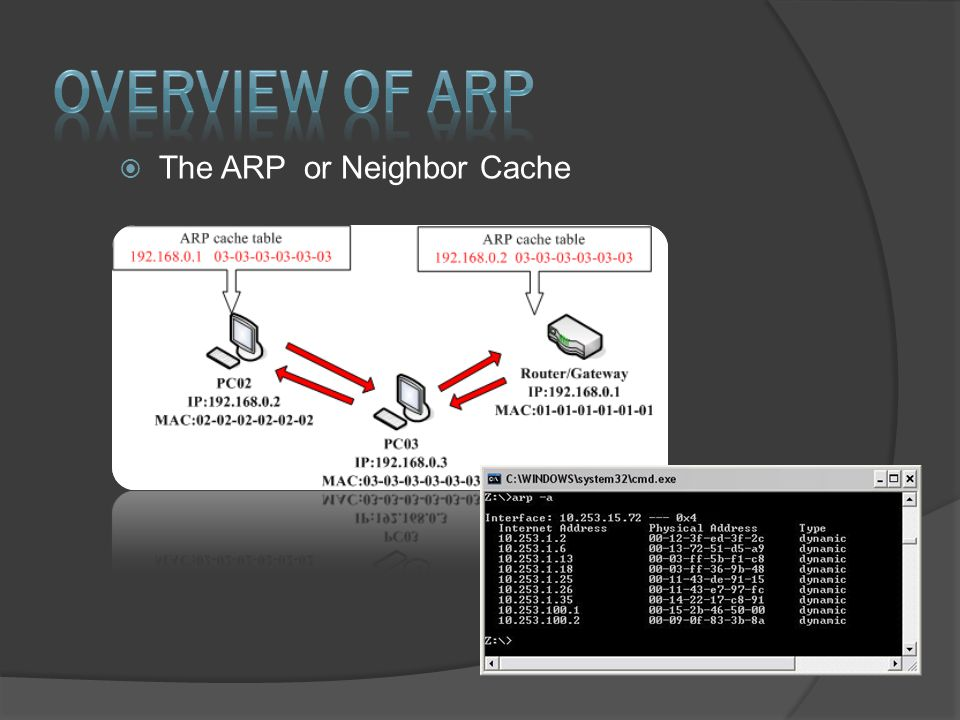  The ARP or Neighbor Cache