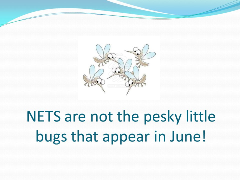 NETS are not the pesky little bugs that appear in June!