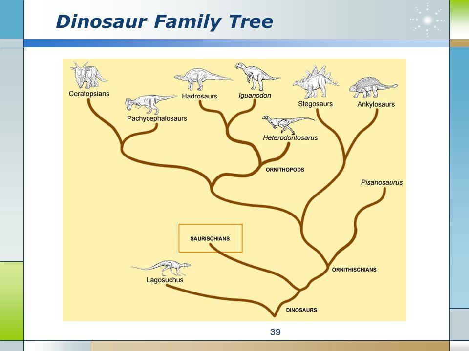Dinosaur Family Tree 39
