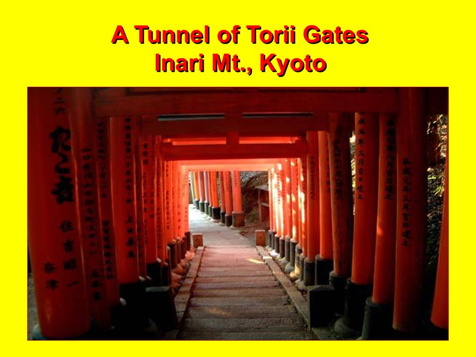 Torii Gate in Winter