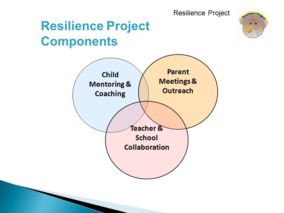 Child Mentoring & Coaching Parent Meetings & Outreach Teacher & School Collaboration Resilience Project Components Resilience Project