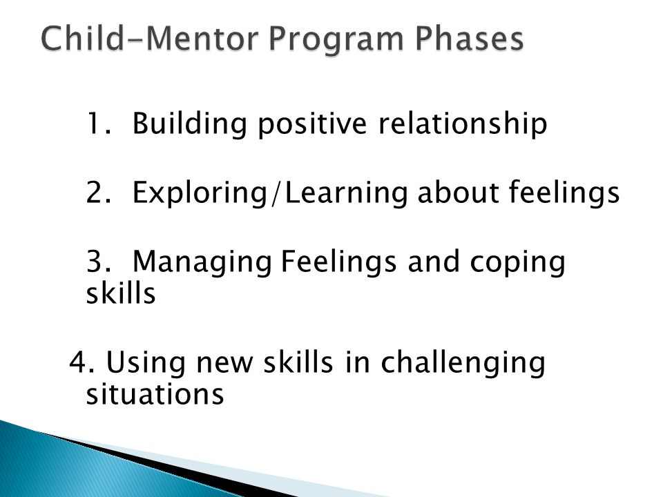 1. Building positive relationship 2. Exploring/Learning about feelings 3. Managing Feelings and coping skills 4. Using new skills in challenging situa