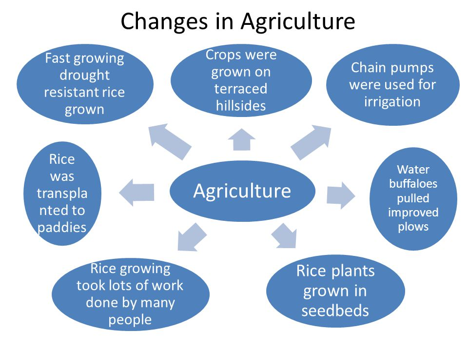 Changes in Agriculture Agriculture Crops were grown on terraced hillsides Chain pumps were used for irrigation Water buffaloes pulled improved plows R