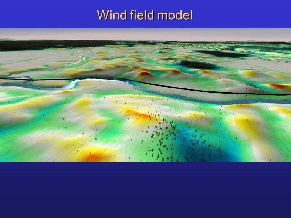 Wind field model