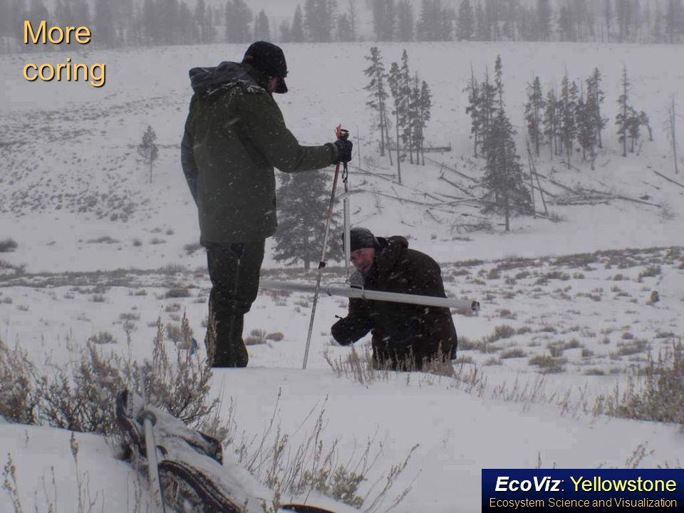 EcoViz: Yellowstone Ecosystem Science and Visualization More coring