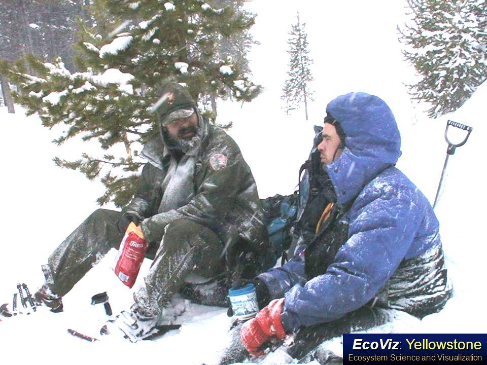 EcoViz: Yellowstone Ecosystem Science and Visualization