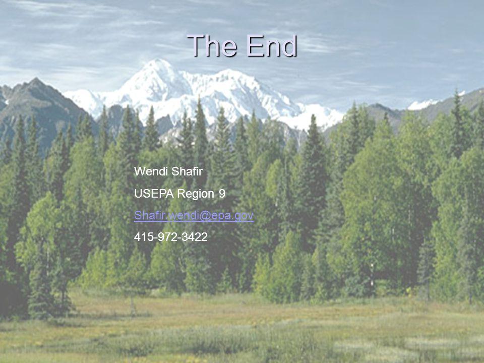 37 The End Wendi Shafir USEPA Region 9 Shafir.wendi@epa.gov 415-972-3422