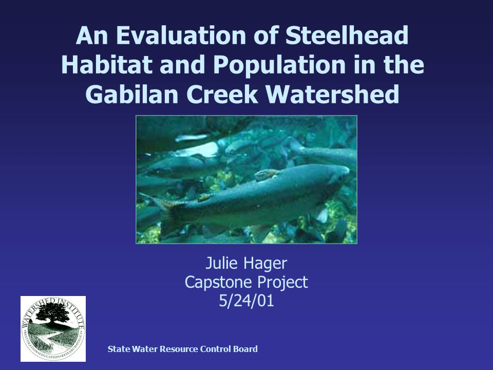 An Evaluation of Steelhead Habitat and Population in the Gabilan Creek Watershed Julie Hager Capstone Project 5/24/01 State Water Resource Control Board