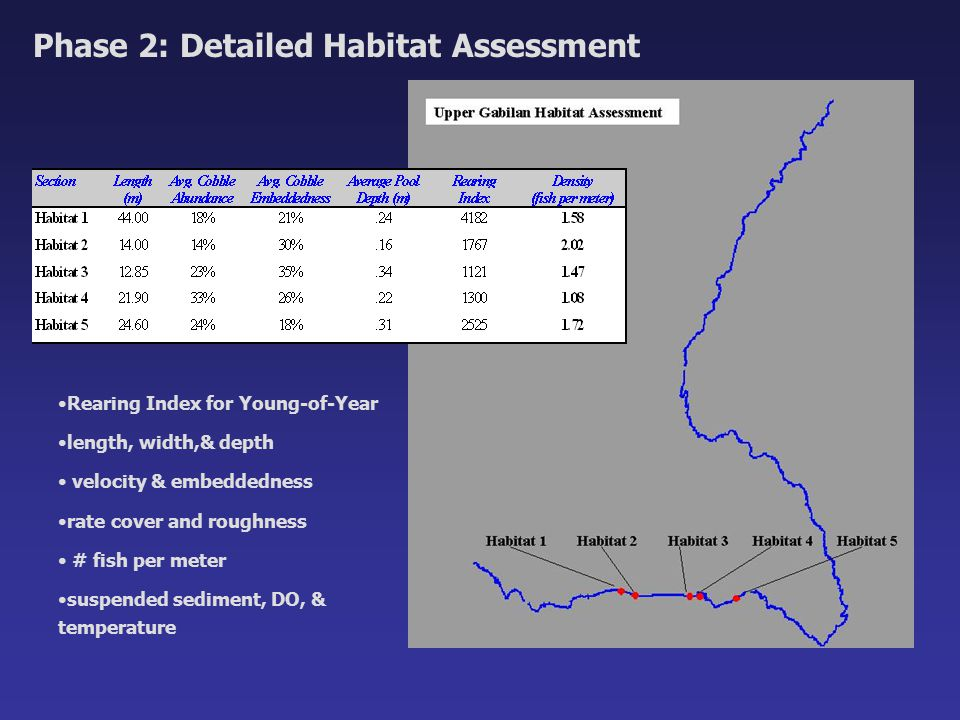 Phase 2: Detailed Habitat Assessment Rearing Index for Young-of-Year length, width,& depth velocity & embeddedness rate cover and roughness # fish per meter suspended sediment, DO, & temperature