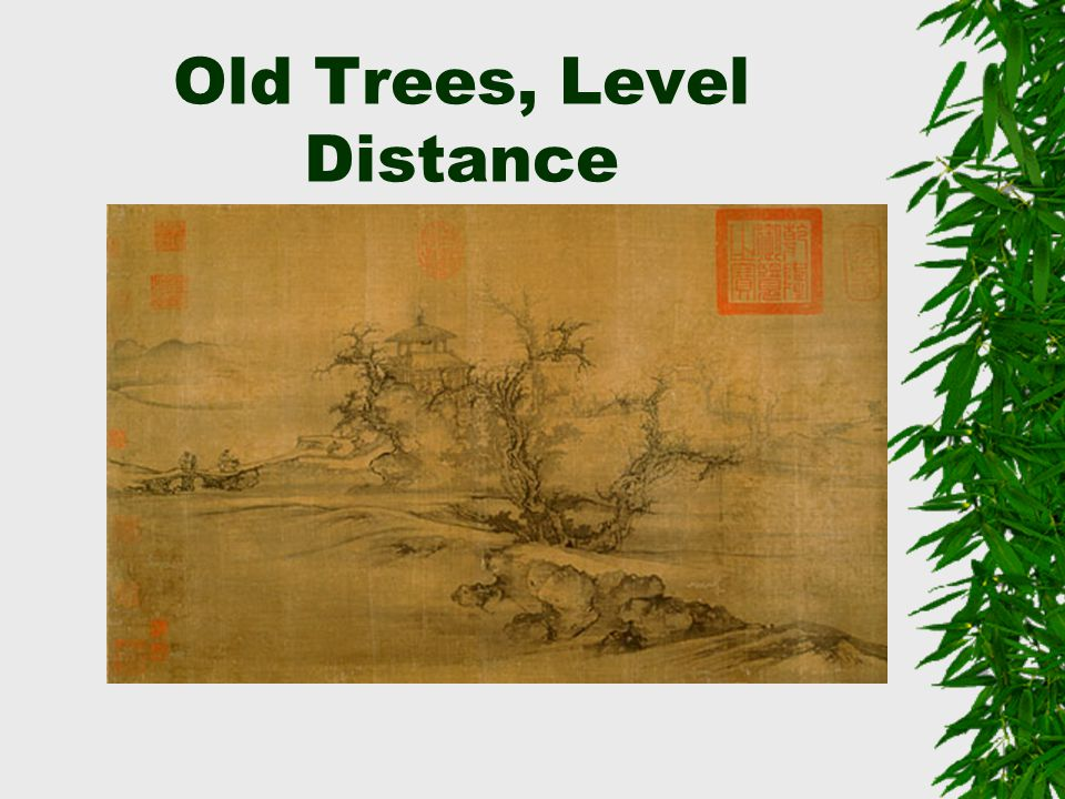 Old Trees, Level Distance