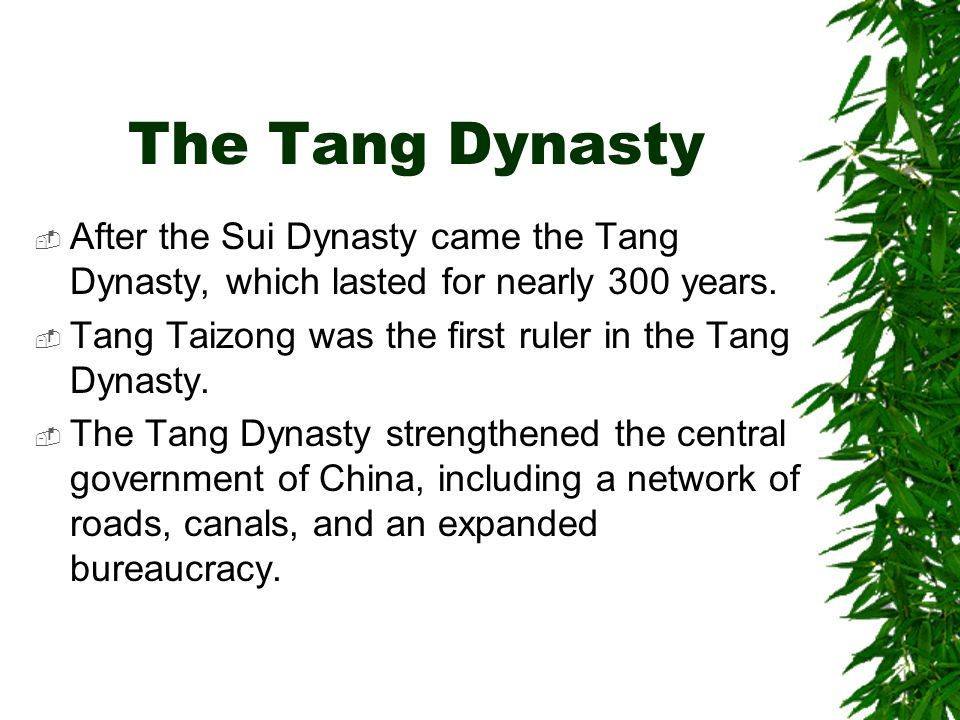The Tang Dynasty  After the Sui Dynasty came the Tang Dynasty, which lasted for nearly 300 years.  Tang Taizong was the first ruler in the Tang Dyna
