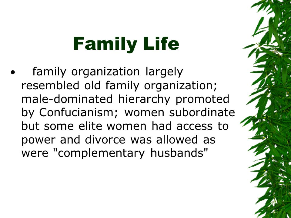 Family Life  family organization largely resembled old family organization; male-dominated hierarchy promoted by Confucianism; women subordinate but