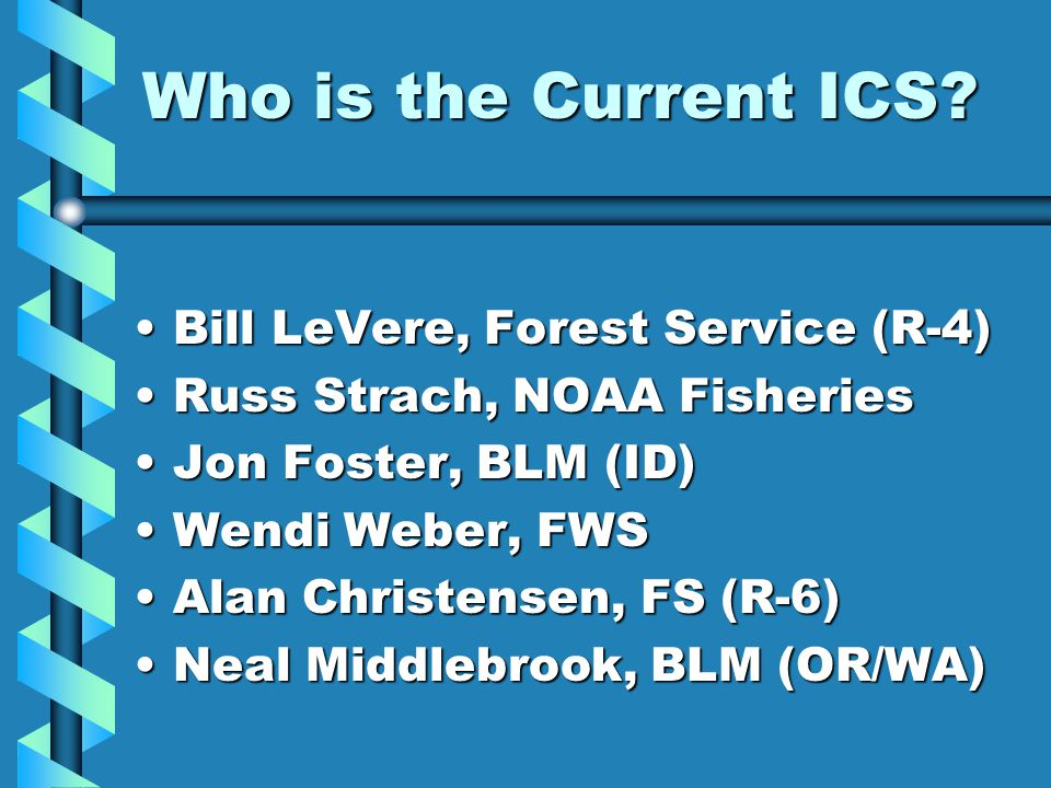 Who is the Current ICS.