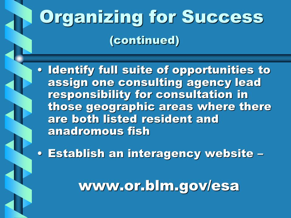 Organizing for Success (continued) Identify full suite of opportunities to assign one consulting agency lead responsibility for consultation in those geographic areas where there are both listed resident and anadromous fishIdentify full suite of opportunities to assign one consulting agency lead responsibility for consultation in those geographic areas where there are both listed resident and anadromous fish Establish an interagency website –Establish an interagency website –www.or.blm.gov/esa