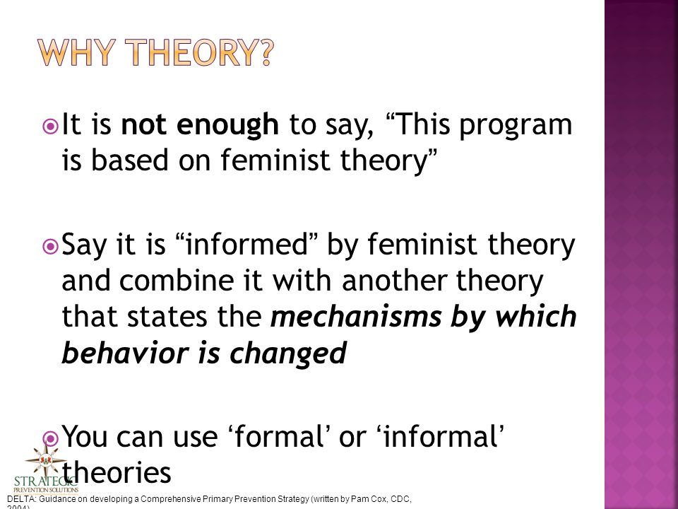  It is not enough to say, This program is based on feminist theory  Say it is informed by feminist theory and combine it with another theory that states the mechanisms by which behavior is changed  You can use 'formal' or 'informal' theories DELTA: Guidance on developing a Comprehensive Primary Prevention Strategy (written by Pam Cox, CDC, 2004)