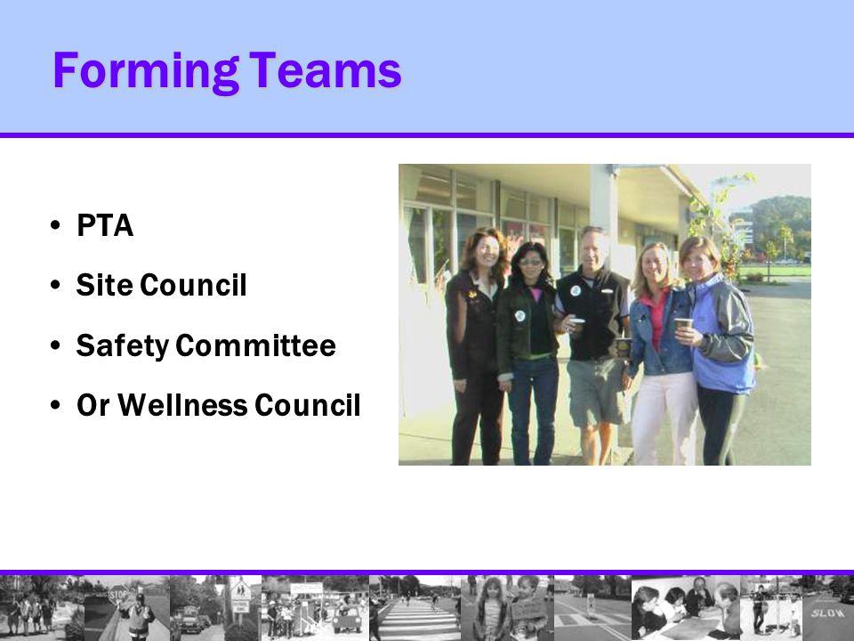 Community SR2S Task Force –Team Leaders –School District Rep –Political Leaders –Public Works –Law Enforcement –Health Professionals –Advocacy Groups