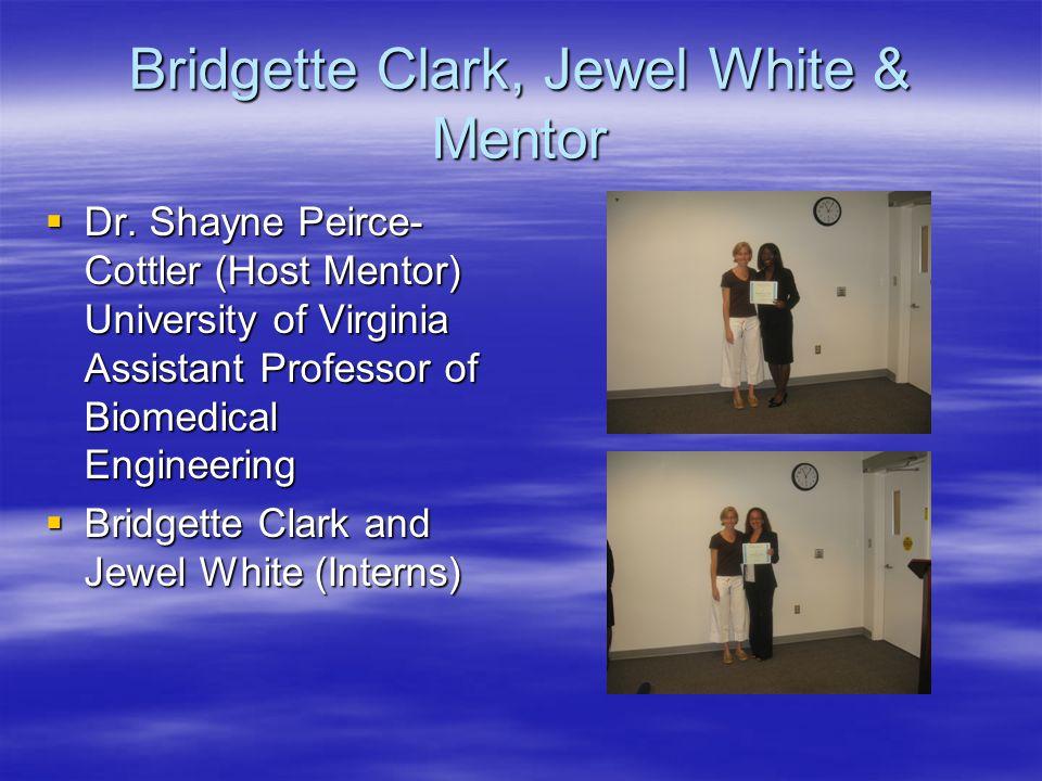 Bridgette Clark, Jewel White & Mentor  Dr. Shayne Peirce- Cottler (Host Mentor) University of Virginia Assistant Professor of Biomedical Engineering