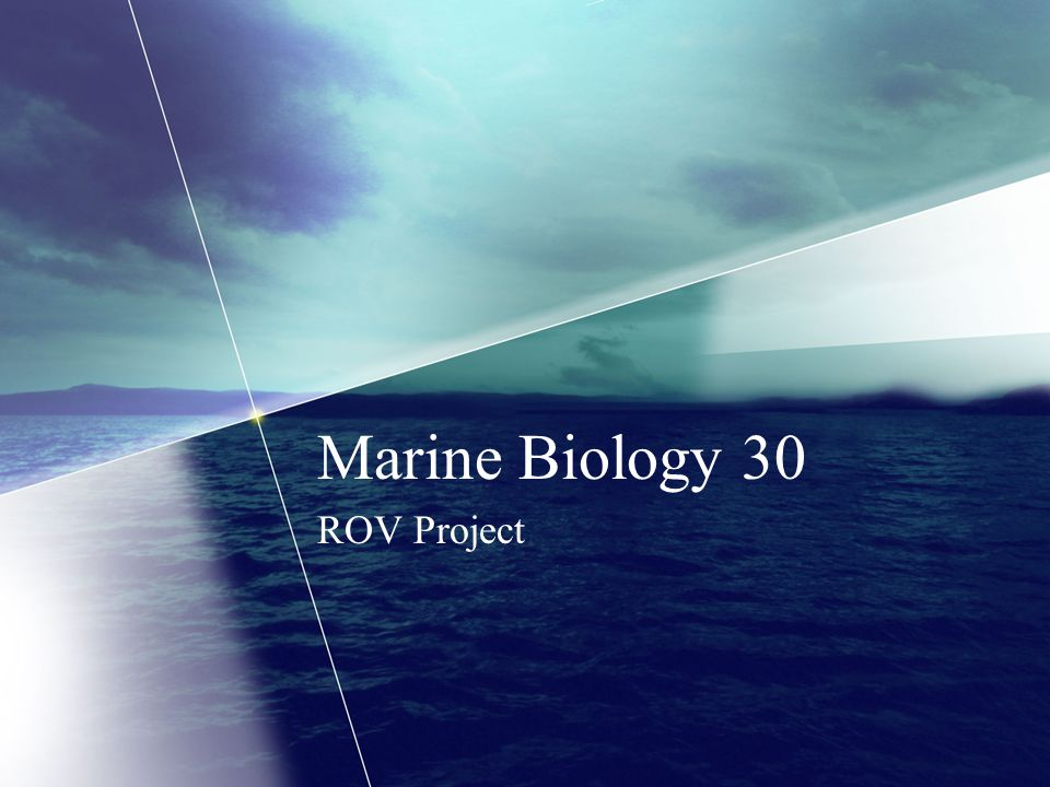 Marine Biology 30 ROV Project