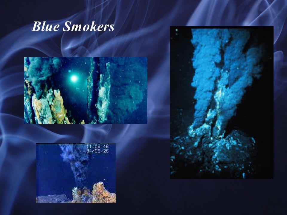 Blue Smokers