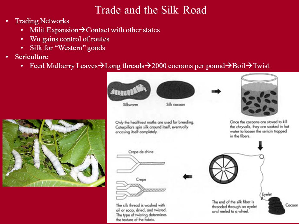 Trade and the Silk Road Trading Networks Milit Expansion  Contact with other states Wu gains control of routes Silk for Western goods Sericulture Feed Mulberry Leaves  Long threads  2000 cocoons per pound  Boil  Twist
