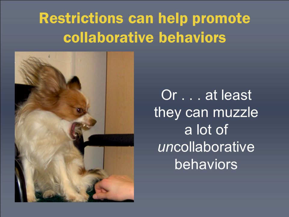 Restrictions can help promote collaborative behaviors Or...