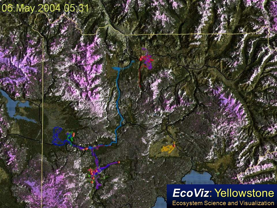 EcoViz: Yellowstone Ecosystem Science and Visualization