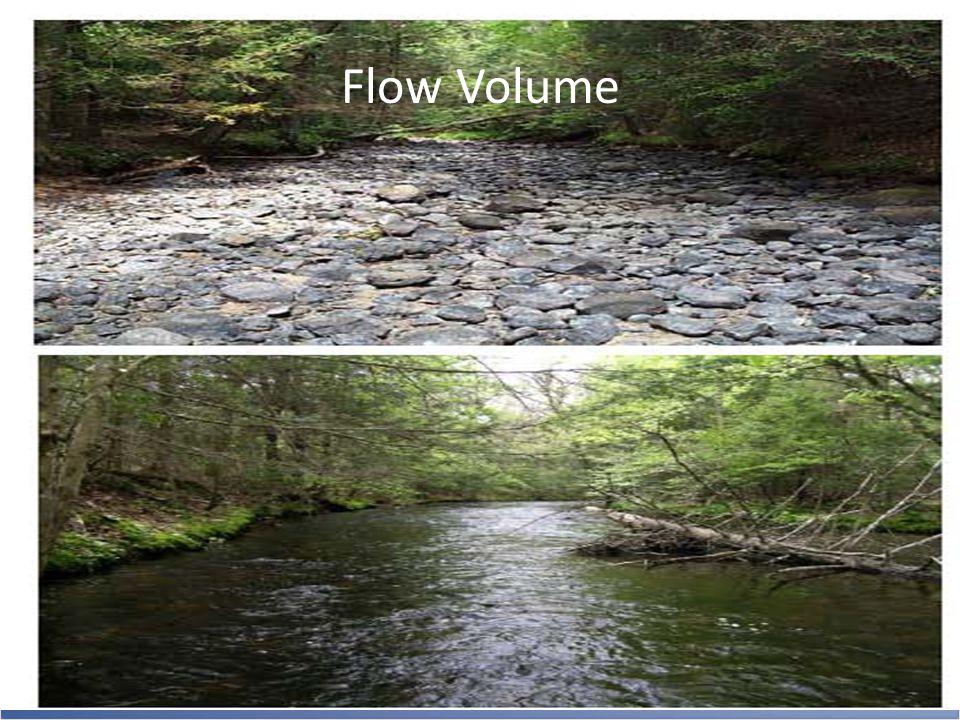 Flow Volume