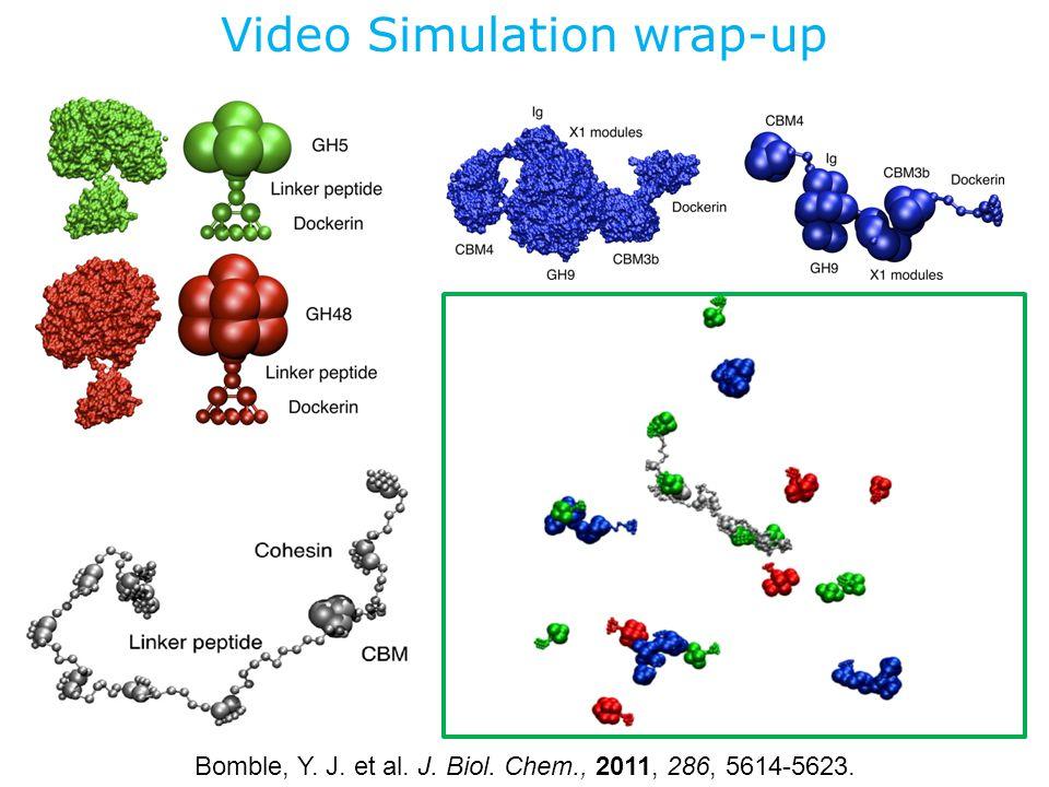 Video Simulation wrap-up Bomble, Y. J. et al. J. Biol. Chem., 2011, 286, 5614-5623.