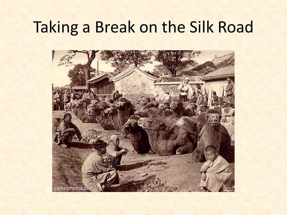 Taking a Break on the Silk Road