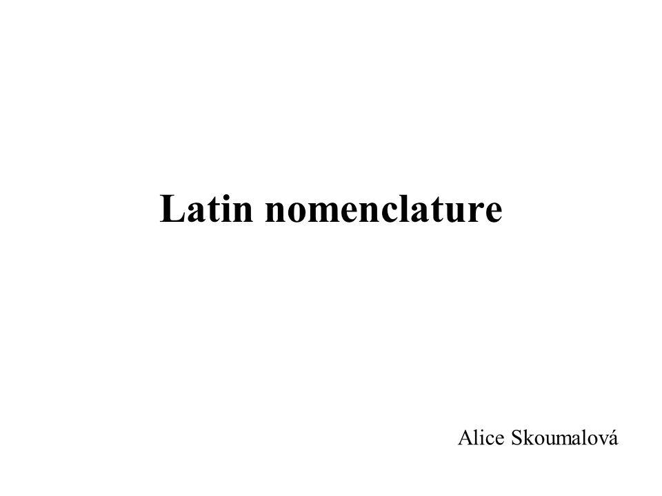 Latin nomenclature Alice Skoumalová