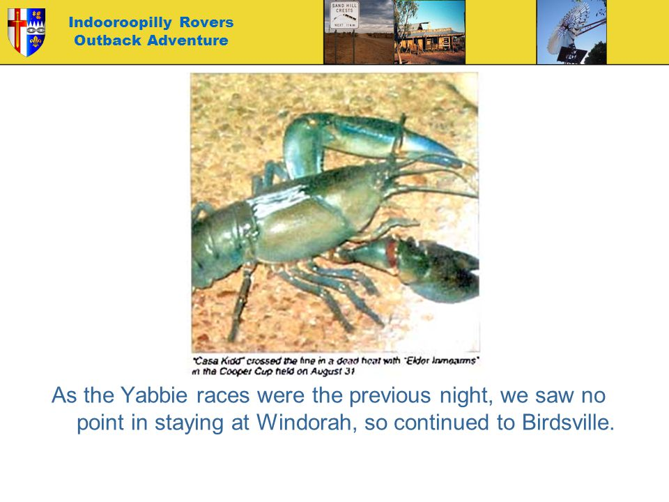 Indooroopilly Rovers Outback Adventure As the Yabbie races were the previous night, we saw no point in staying at Windorah, so continued to Birdsville
