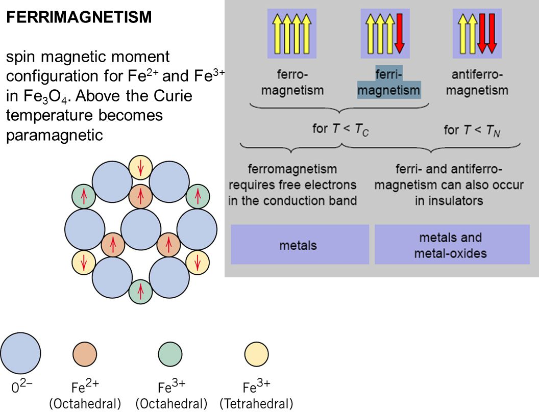 FERRIMAGNETISM spin magnetic moment configuration for Fe 2+ and Fe 3+ ions in Fe 3 O 4. Above the Curie temperature becomes paramagnetic