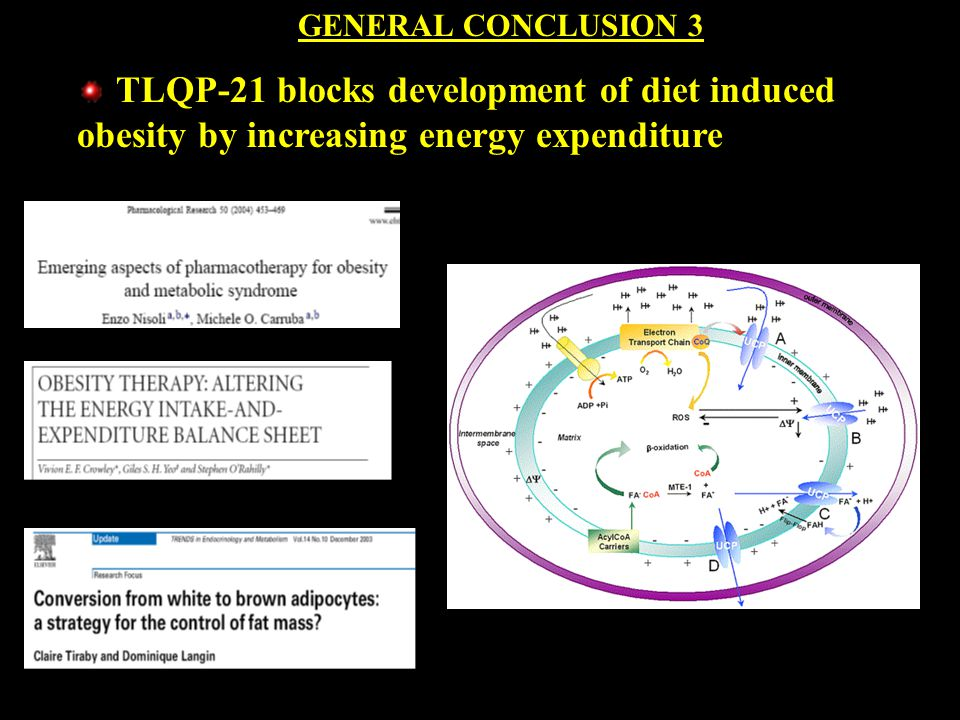 GENERAL CONCLUSION 3 TLQP-21 blocks development of diet induced obesity by increasing energy expenditure