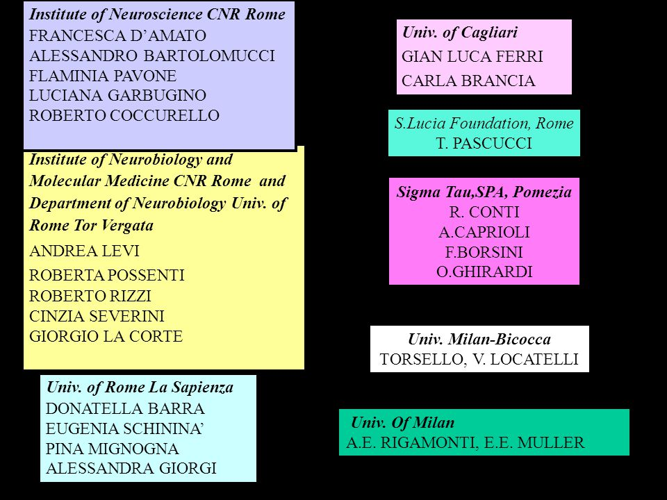 Institute of Neurobiology and Molecular Medicine CNR Rome and Department of Neurobiology Univ.
