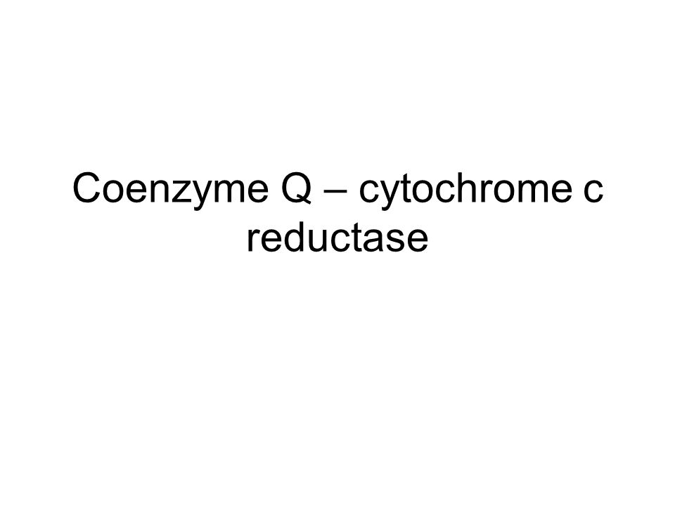 Coenzyme Q – cytochrome c reductase