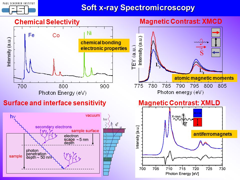 Surface and interface sensitivity Soft x-ray Spectromicroscopy Chemical Selectivity Intensity (a.u.) chemical bonding electronic properties atomic magnetic moments Magnetic Contrast: XMCD S Intensity (a.u.) Magnetic Contrast: XMLD antiferromagnets